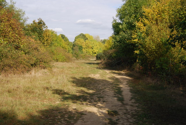 Eden Valley Walk north of Haysden Lake - geograph.org.uk - 1526356