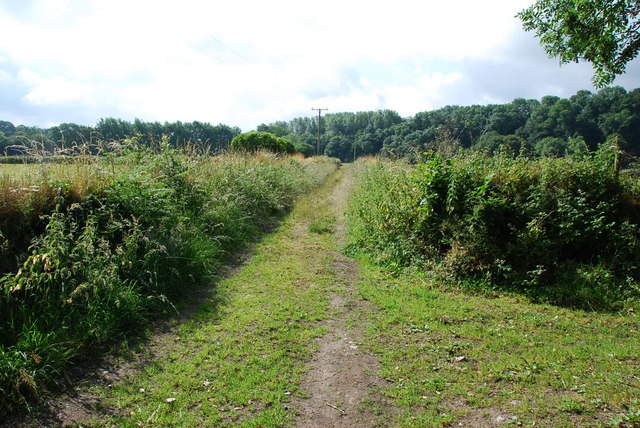 Erme Plym Trail - geograph.org.uk - 1374158