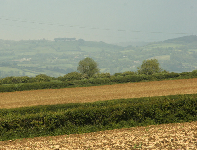 Farmland on Dundry Hill - geograph.org.uk - 1349294