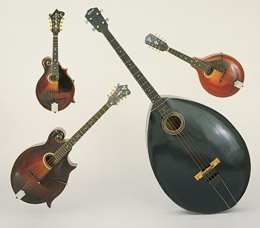 From top left, clockwise: 1920 Gibson F-4 mandolin, 1917 Gibson H-2 mandola, 1929 Gibson mando-bass, and 1924 Gibson K-4 mandocello from Gregg Miner's collection.