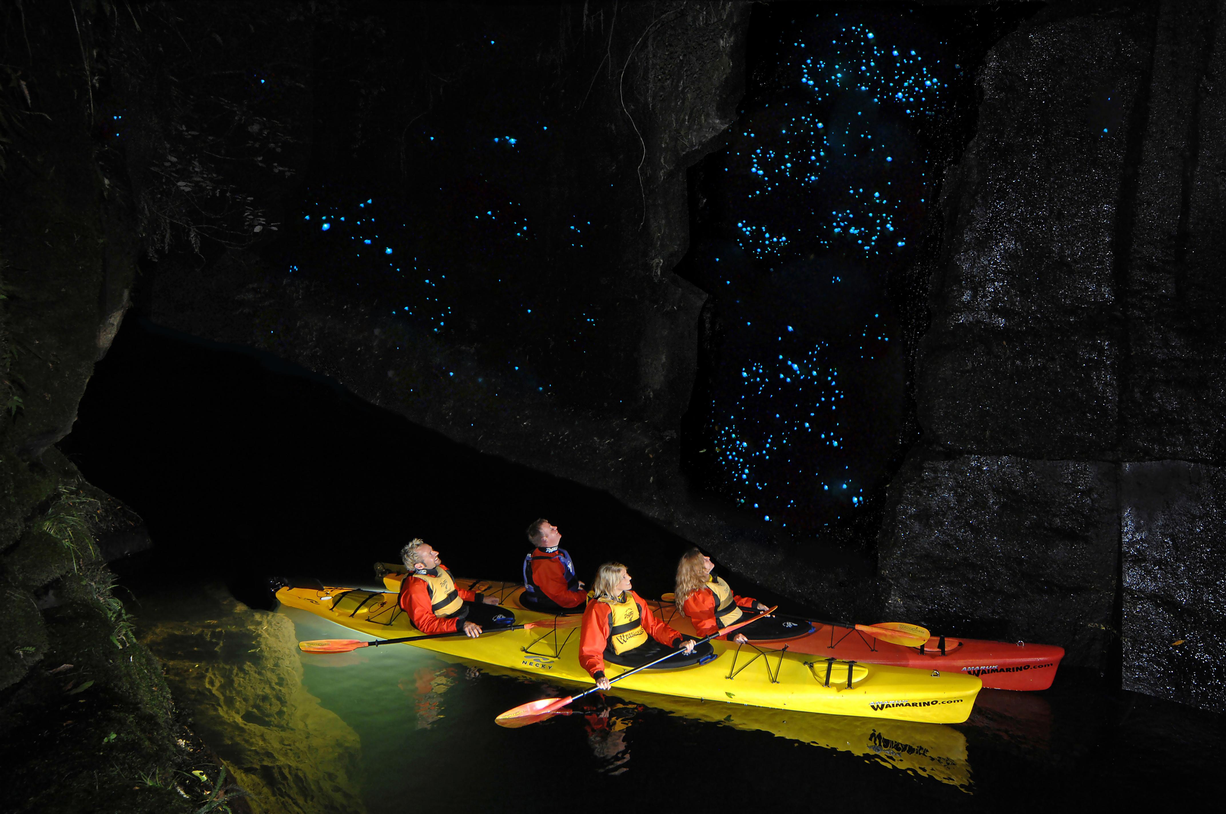 kayak tour in the bay of plenty
