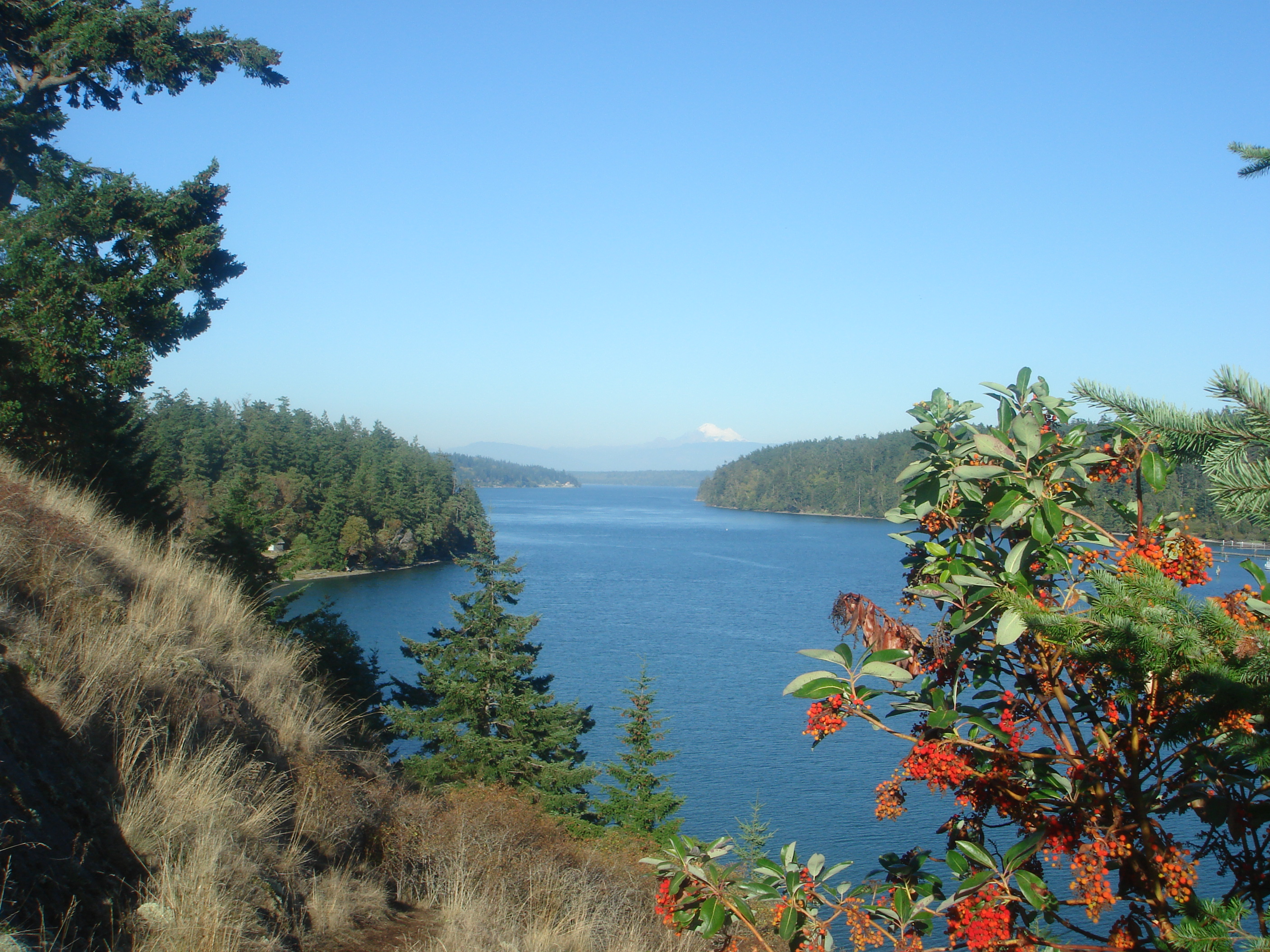 San Juan Islands Washington Cabin Rentals