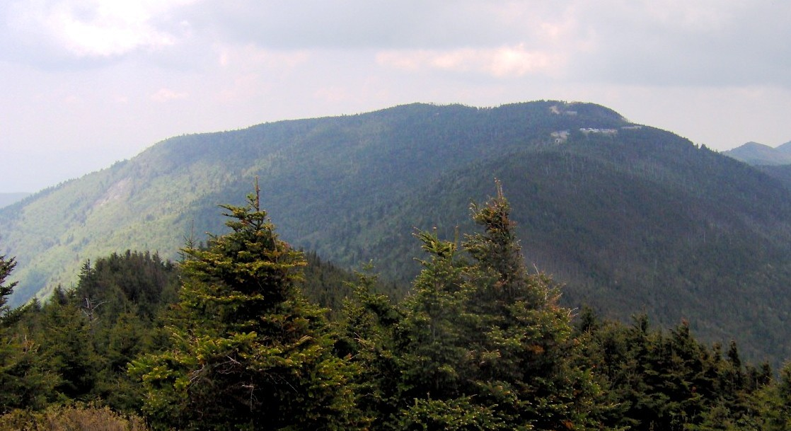 how tall is mount mitchell