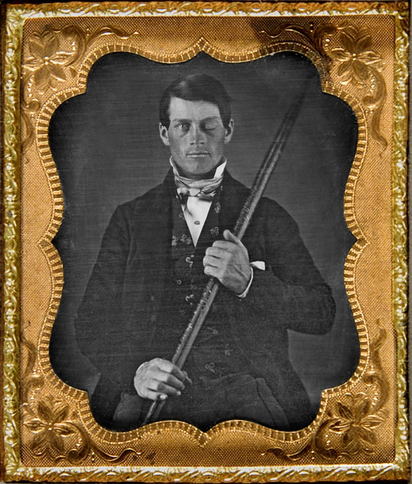 the case of phineas gage The main author is jack van horn and the article is called mapping connectivity damage in the case of phineas gage in case the link doesnt work.