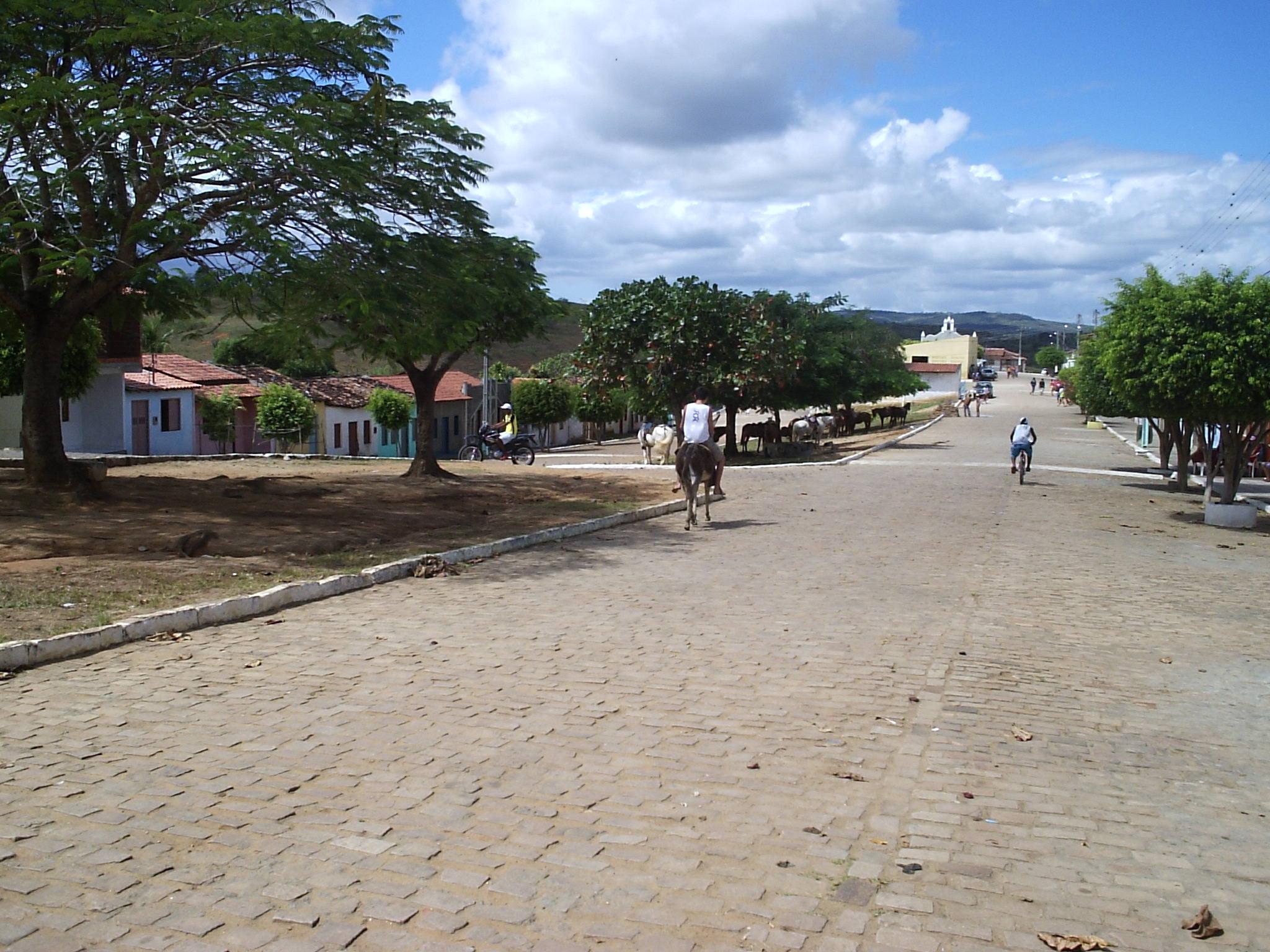 Baixa Grande Bahia fonte: upload.wikimedia.org