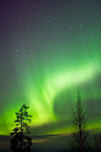 File:Rovaniemi - Aurora Borealis.jpg