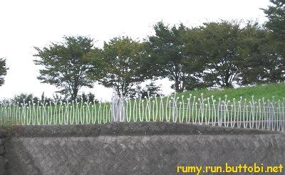 File:Saiko2 - panoramio.jpg