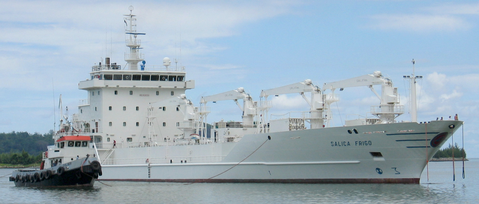 Reefer ship - Wikipedia