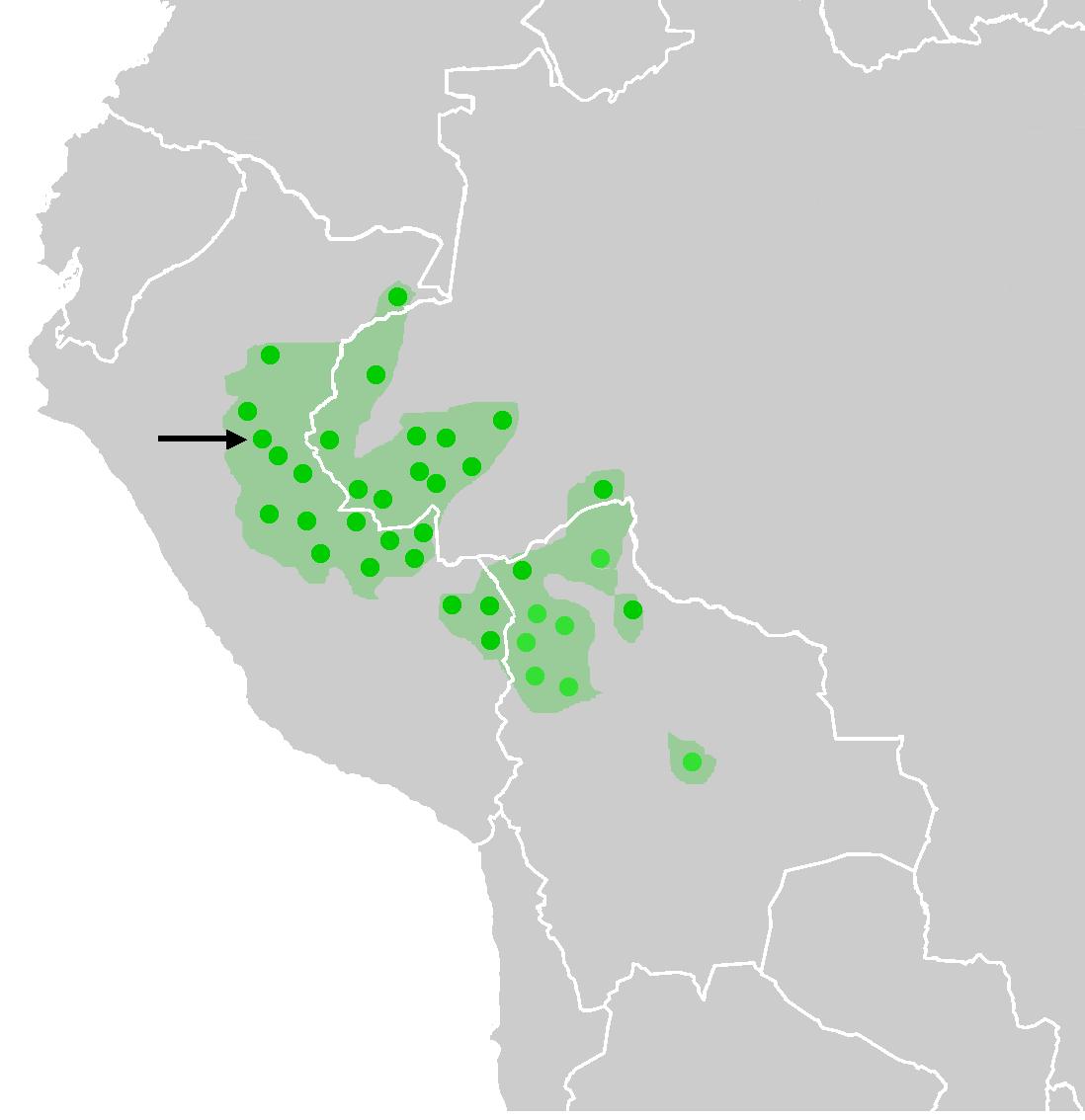Resultado de imagen para Ashaninka casa mapa