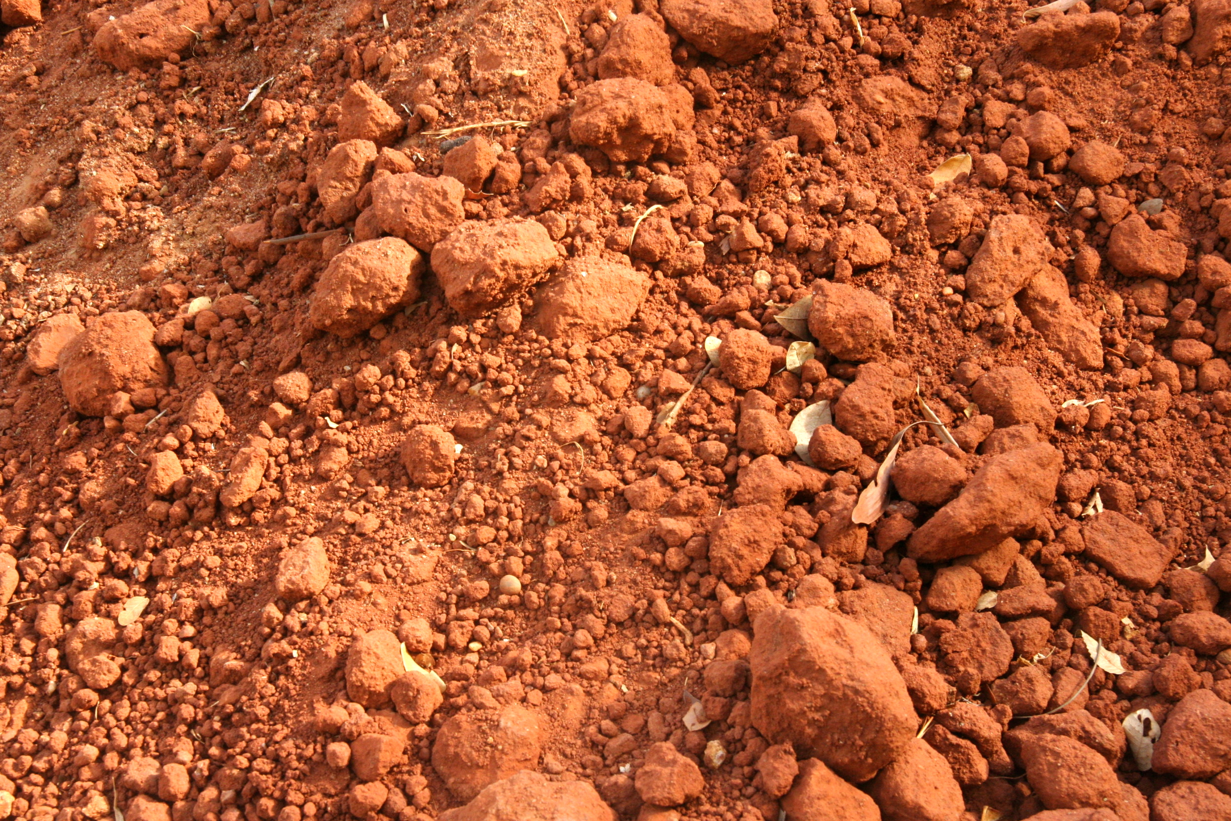 File soil auroville jpg wikimedia commons for Different types of soil wikipedia