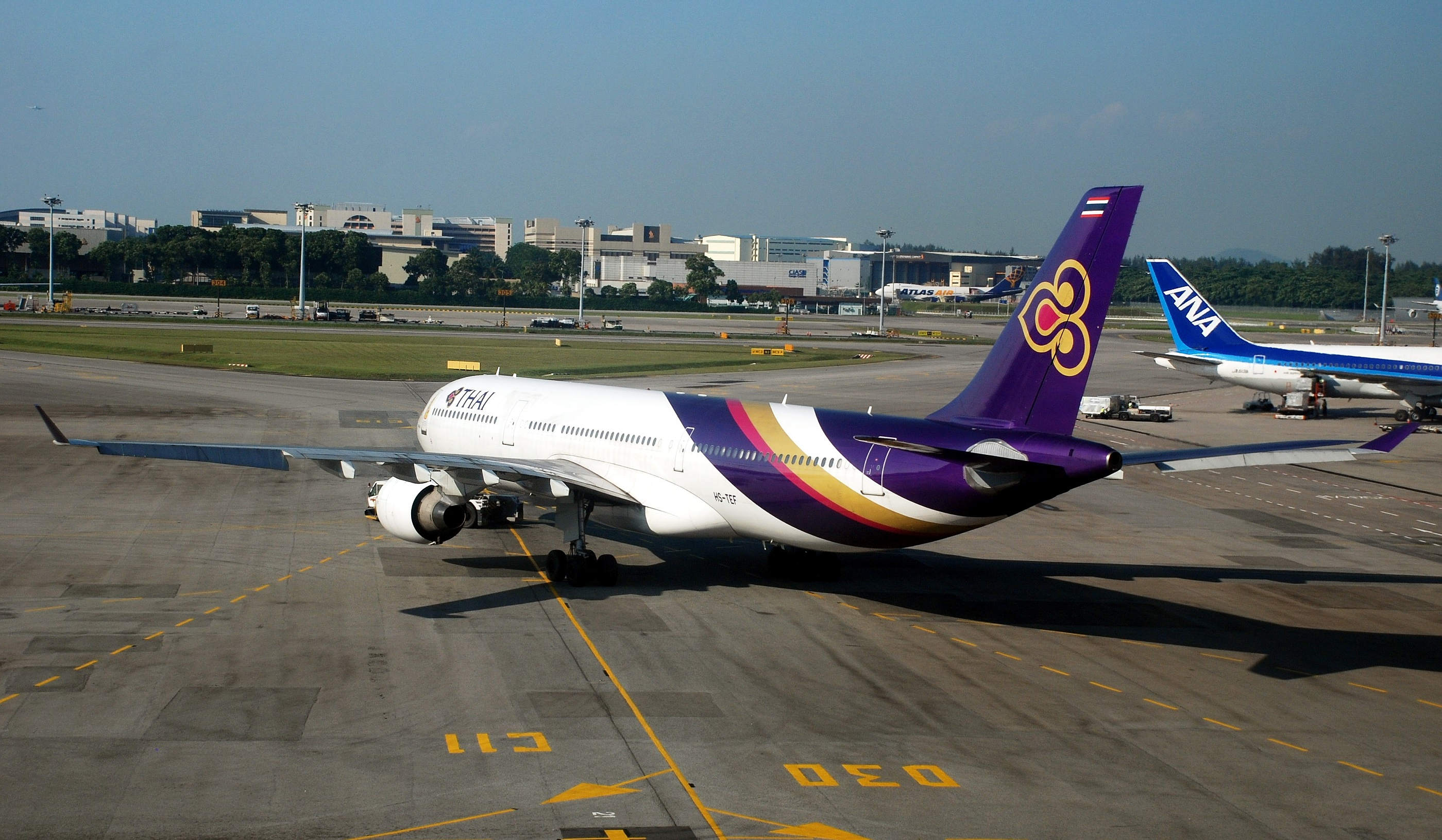 Download this Descrizione Thai Airways Airbus Sin picture