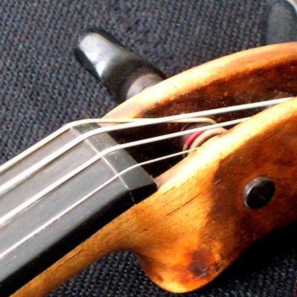 http://upload.wikimedia.org/wikipedia/commons/1/1b/Violin_nut.jpg