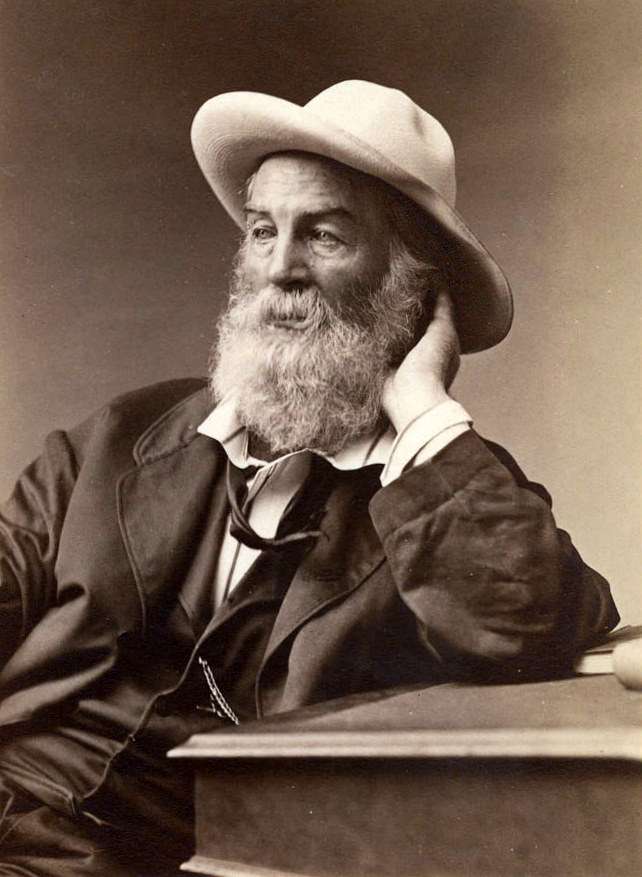 file walt whitman jpg  file walt whitman 1872 jpg