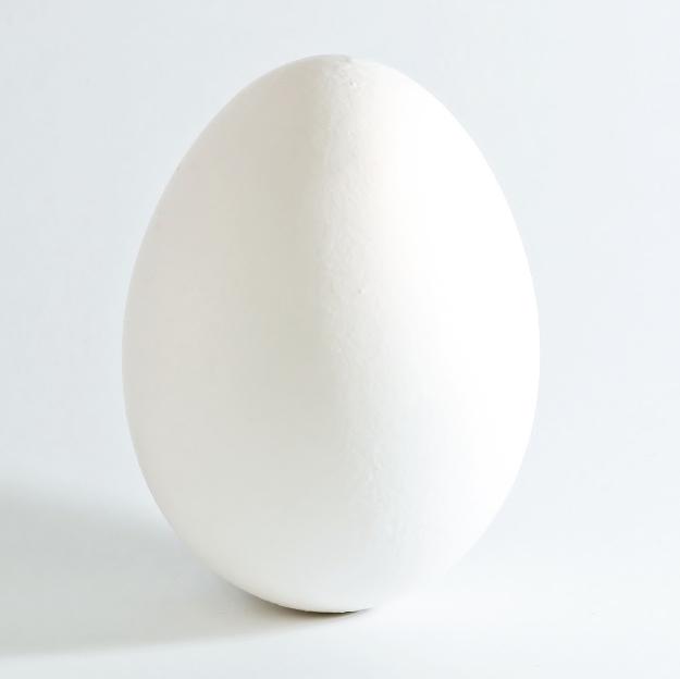 Egg white - Wikipedia