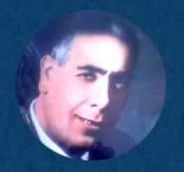 محمود الكمشوشي ويكيبيديا