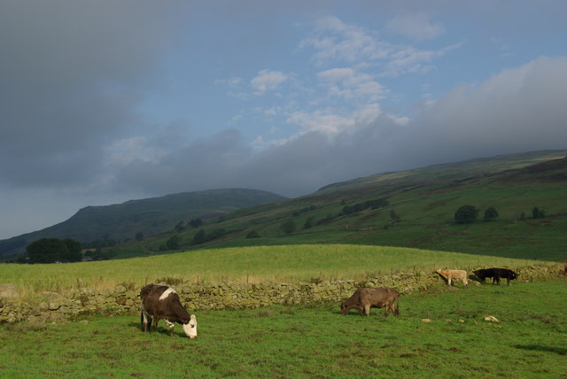 A view to the Campsie Fells from the Strathkelvin Railway Path - geograph.org.uk - 1012267