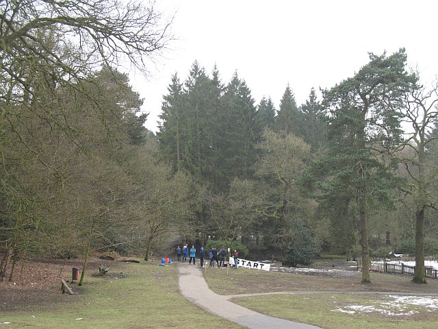 Below the visitor centre, Lickey Hills - geograph.org.uk - 1168698