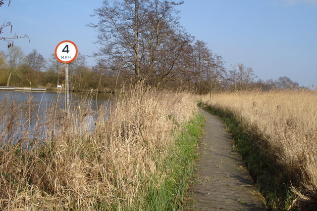 Boardwalk by the river Bure - geograph.org.uk - 1257112