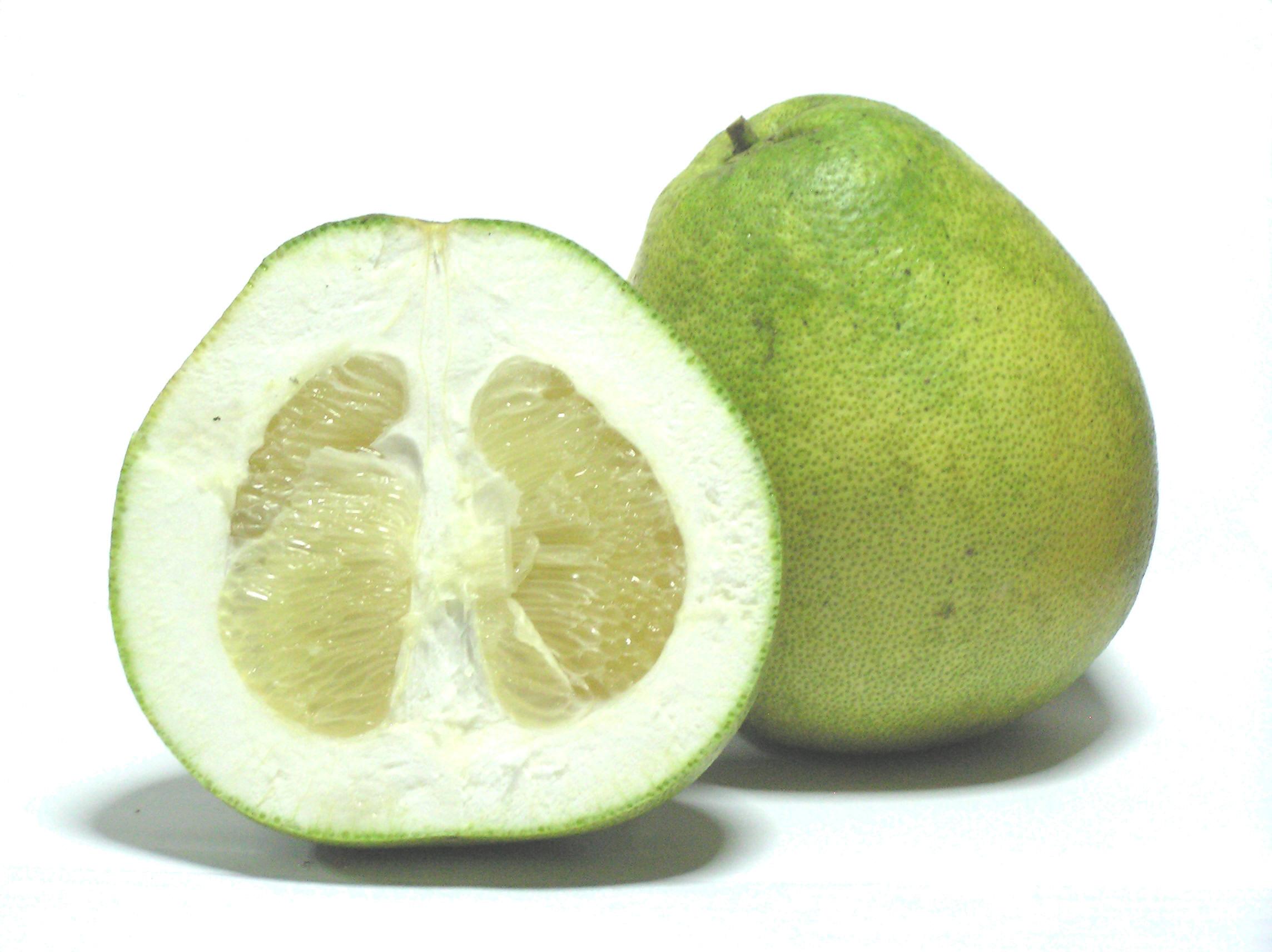 https://upload.wikimedia.org/wikipedia/commons/1/1c/Citrus_grandis_-_Honey_White.jpg