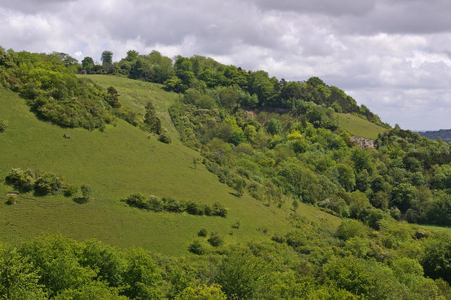 Colley Hill - geograph.org.uk - 1316232