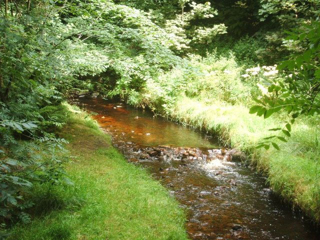 Crowden Brook at Upper Booth - geograph.org.uk - 1443794