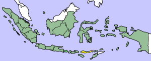 Flores is the island highlighted in yellow. The territory of Indonesia as a whole is in green.