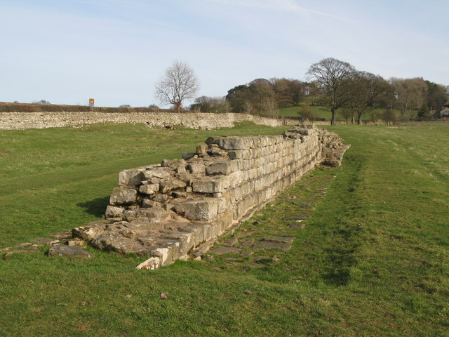 Hadrian's Wall at Planetrees (3) - geograph.org.uk - 1246686