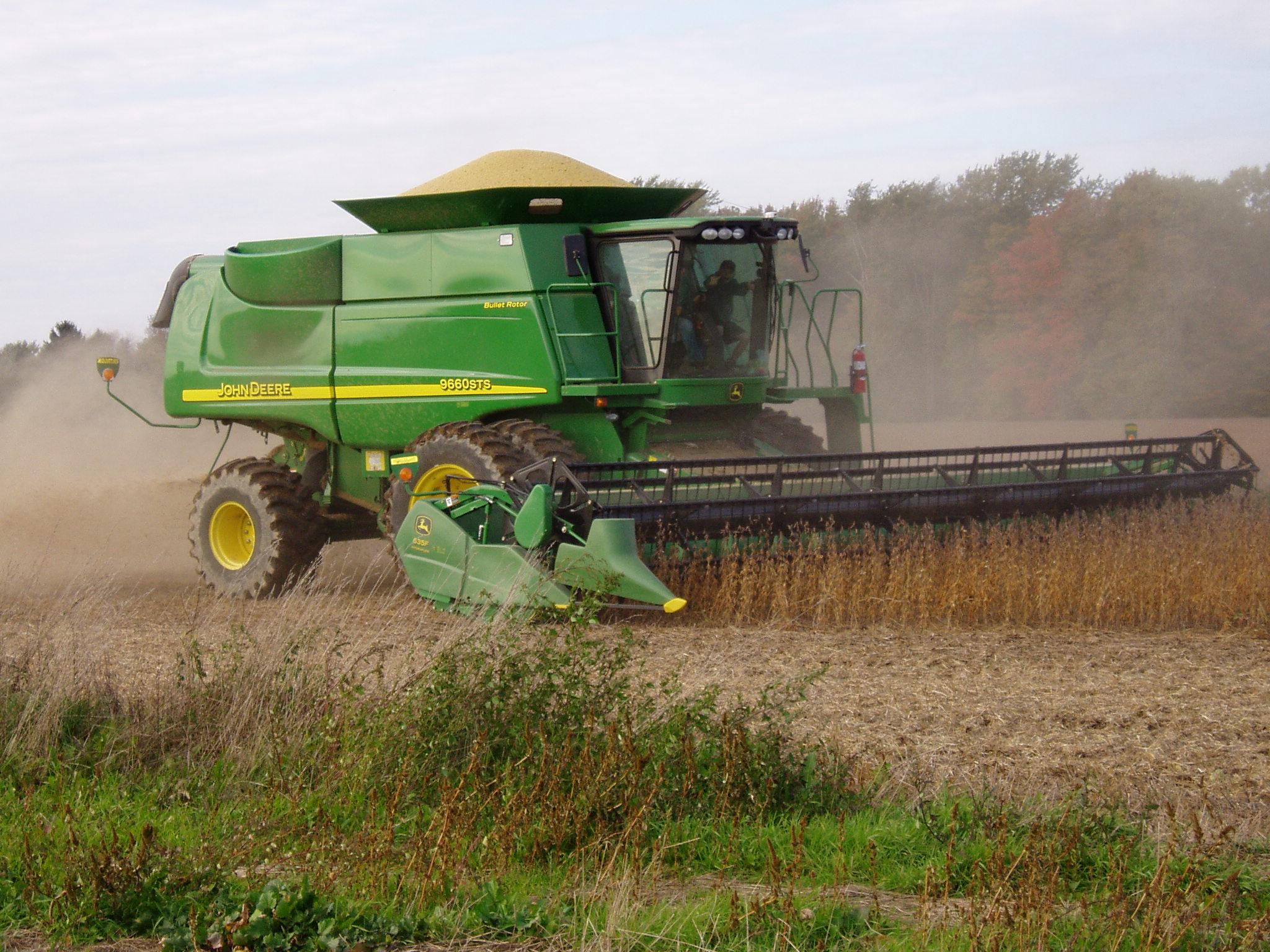 Recolectando semillas de soja