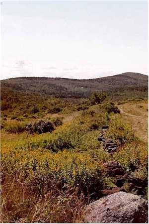 Hubbard Hill, Monadnock-Sunapee Greenway Trail...