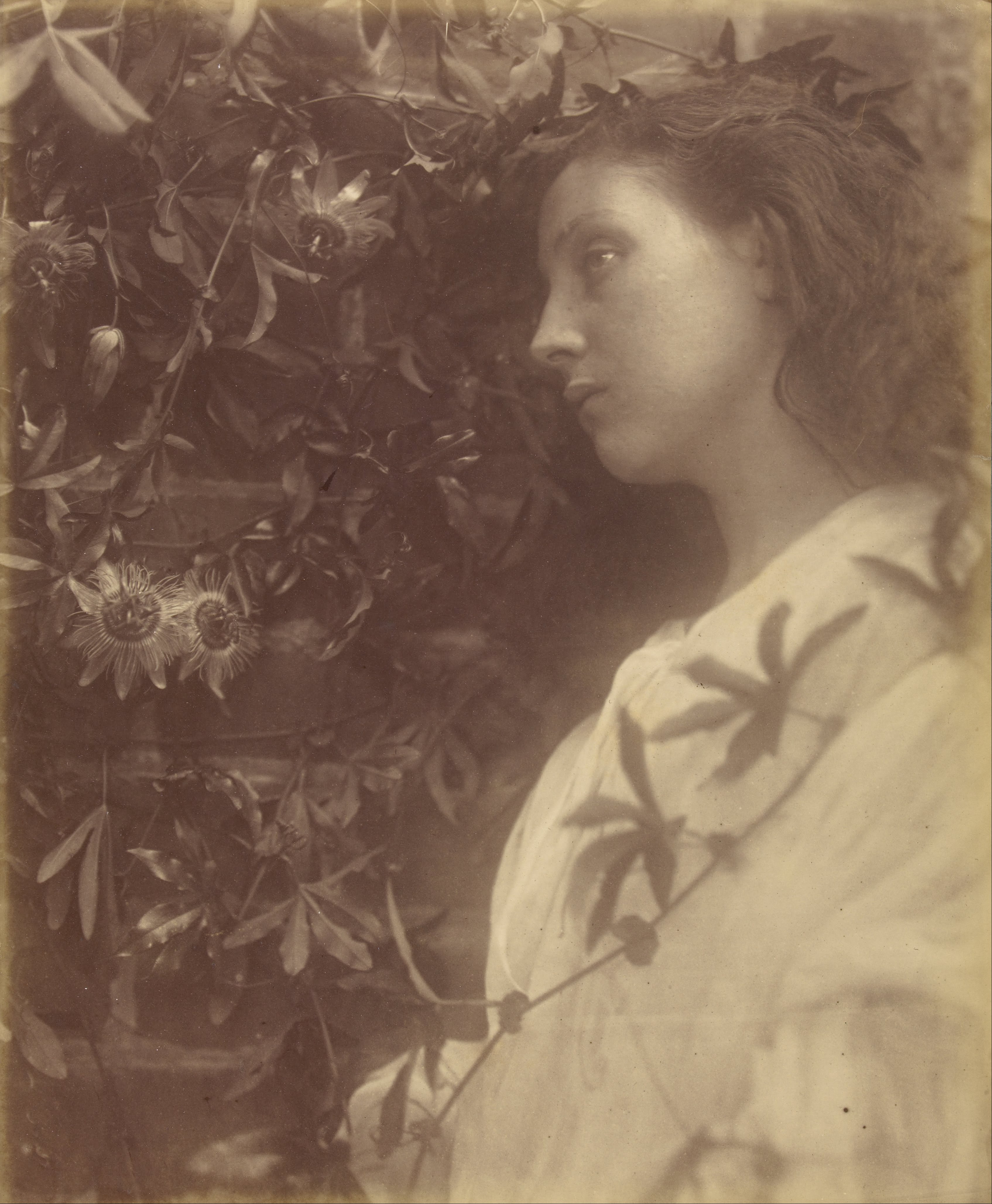 a biography of juliet margaret cameron an english victorian photographer 4 posts published by embla during october 2014 main menu skip to content was an english theatre and musical film julia margaret cameron (2) julie andrews (5.