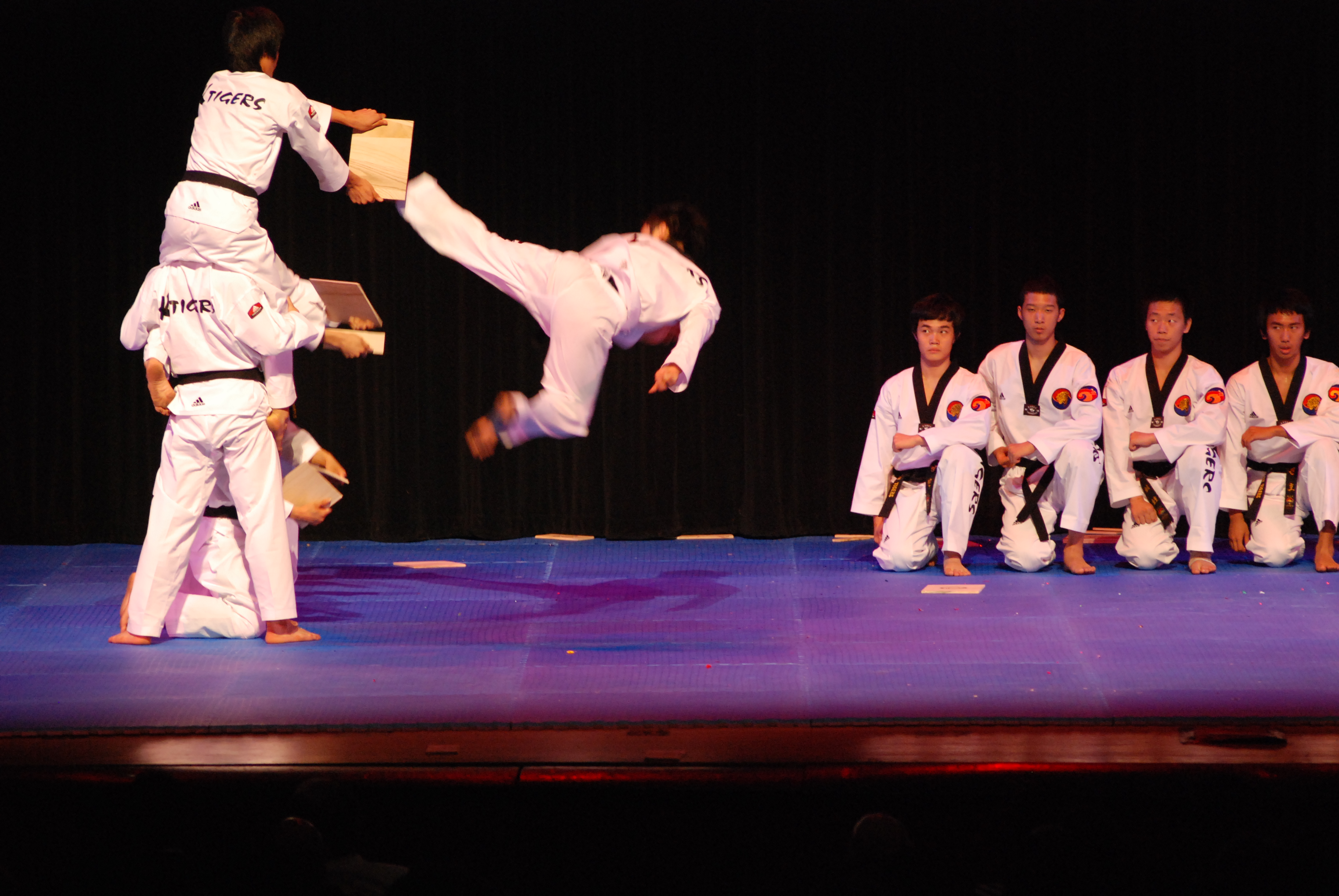 club taekwondo performance