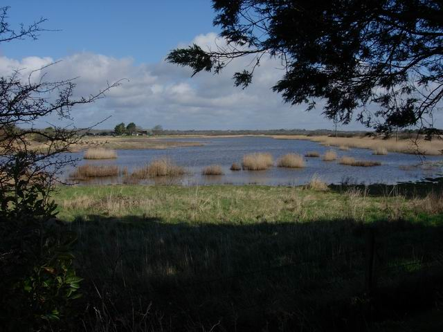 Keyhaven Marshes - geograph.org.uk - 145593