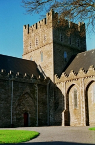 Kildare cathedral 2003.jpg