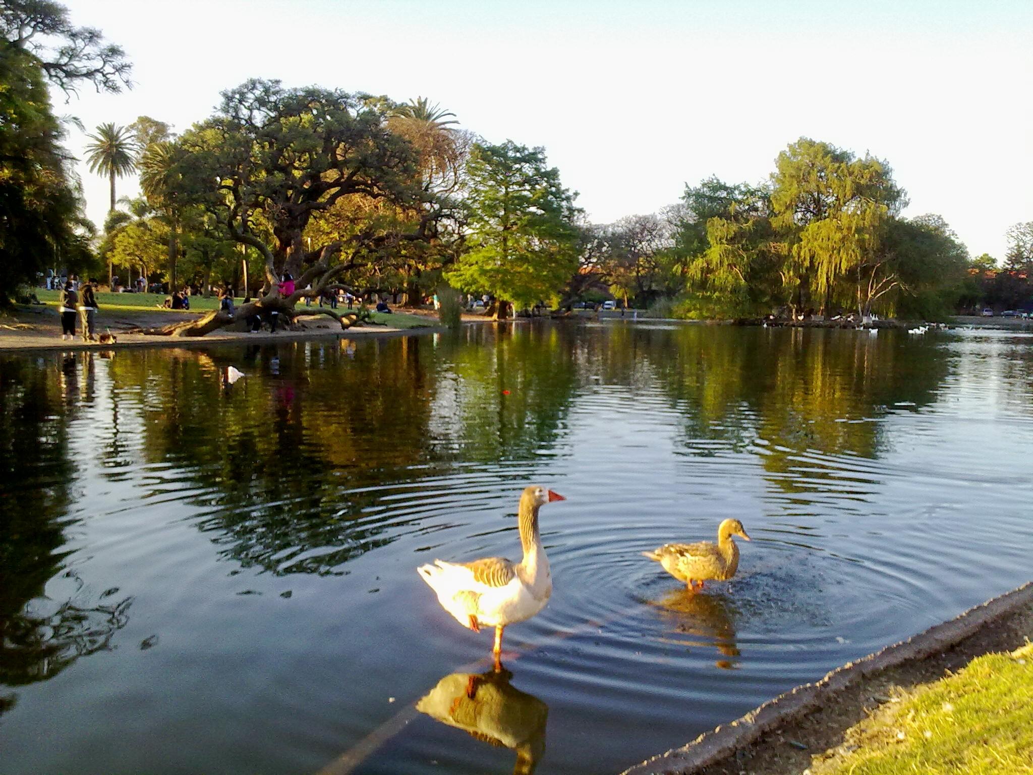 File lago del wikimedia commons for Como construir un lago artificial