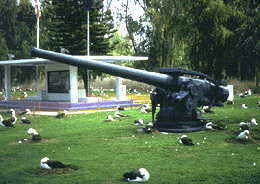 Файл:Midway Islands cannon albatross.png