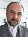Mohammad Khazaee UNDP 2009.jpg