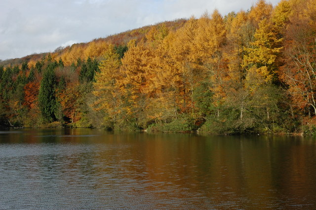 Parkmill Pond, Woodchester Park - geograph.org.uk - 1038461