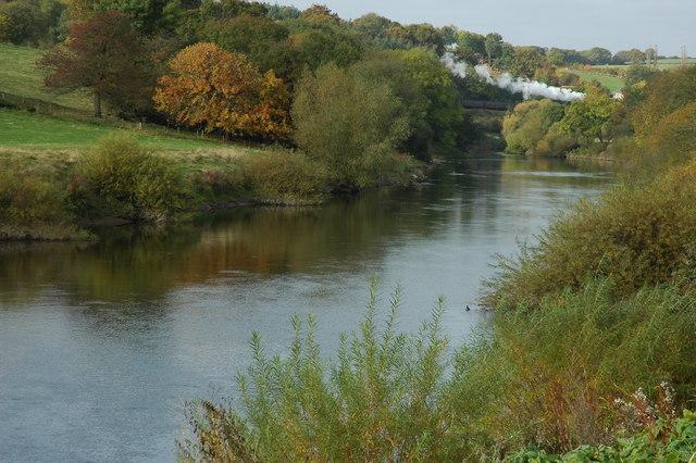 River Severn at Upper Arley - geograph.org.uk - 1542263