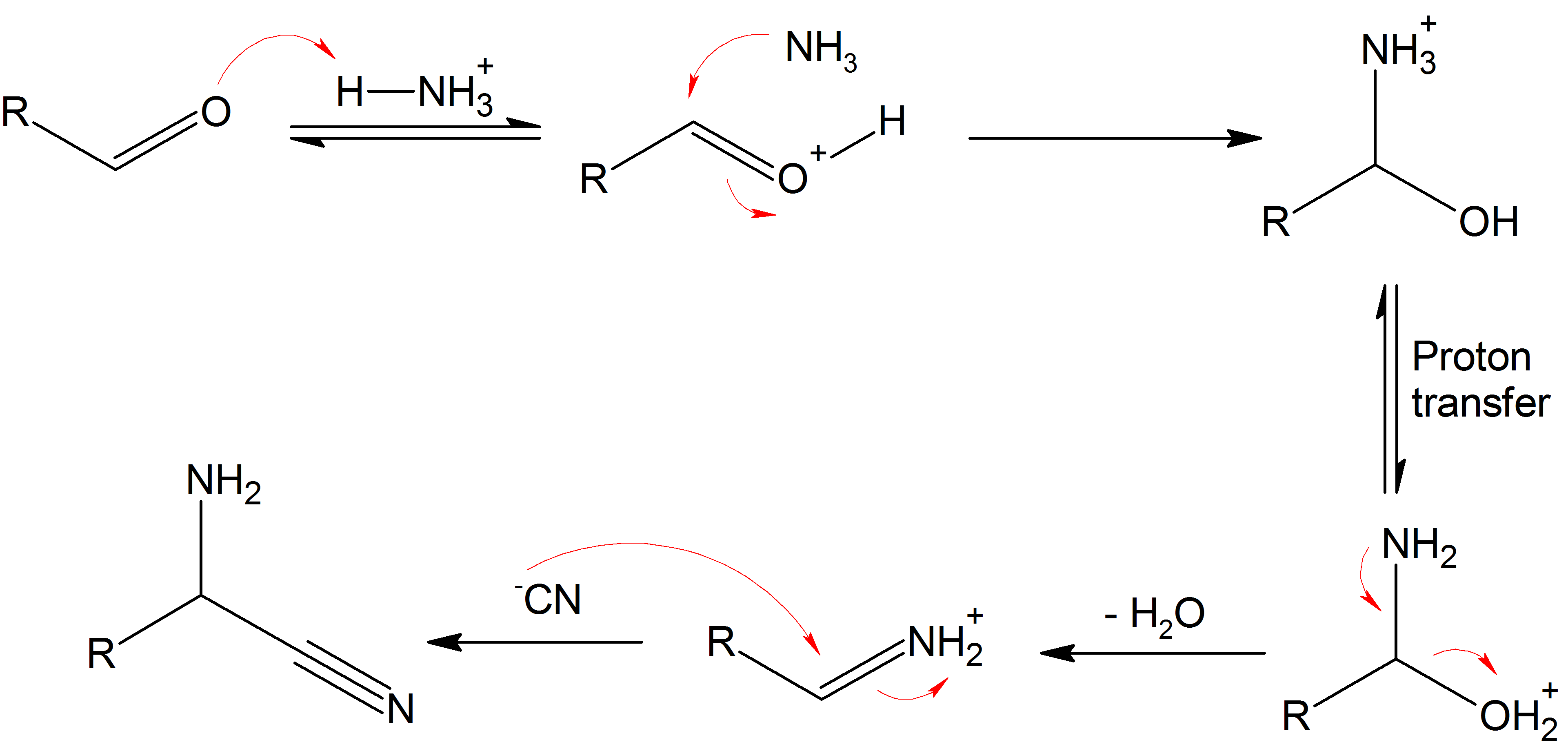 amino acid sythesis Amino acids that form alpha ketoglutarate via glutamate 1 glutamine-converted to glutamate and ammonia by the enzyme glutaminase -glutamate is converted.