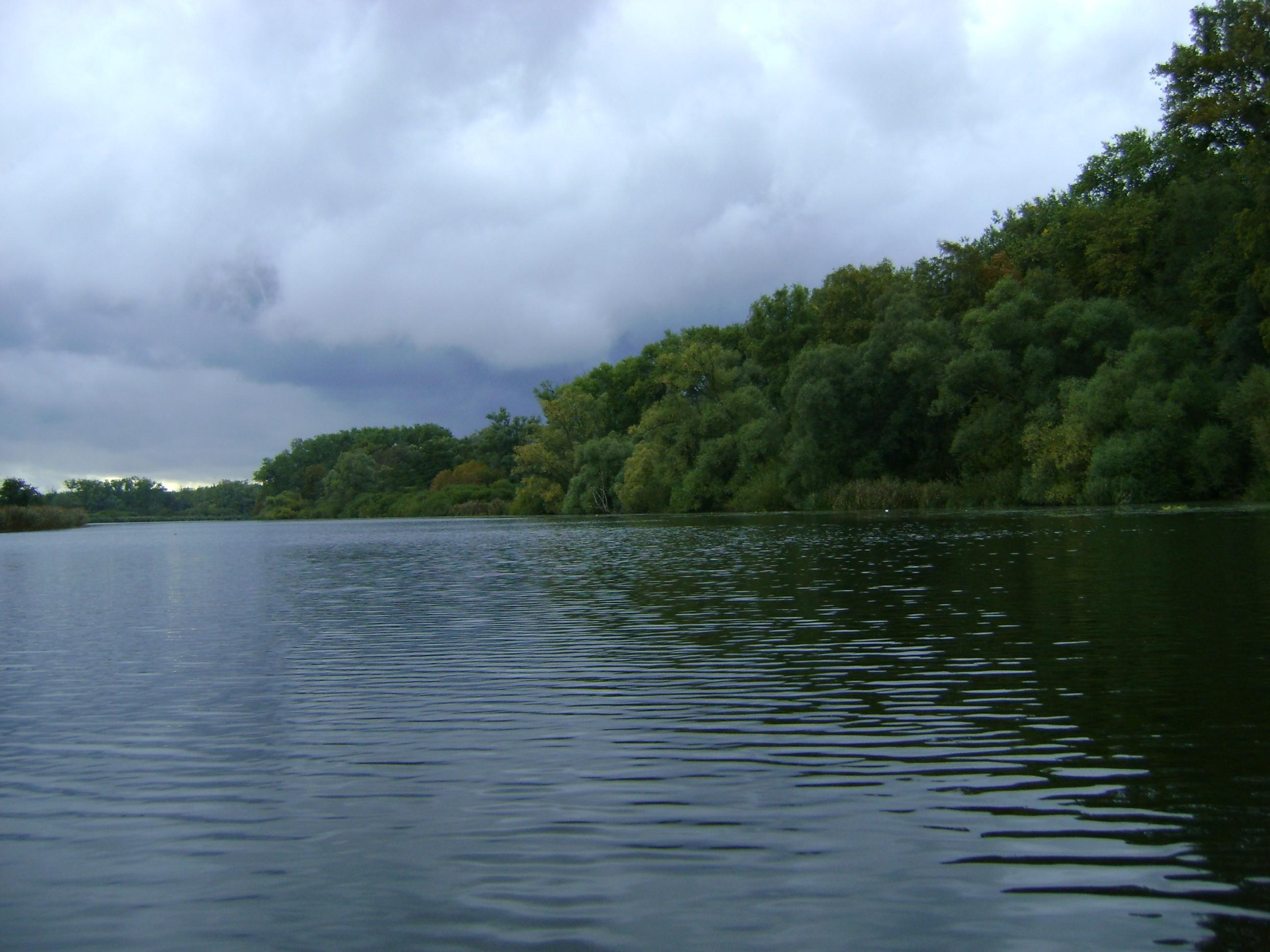 Święta (dopływ jeziora Dąbie)