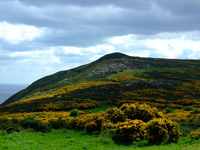 View of Bray Head - geograph.org.uk - 1353208