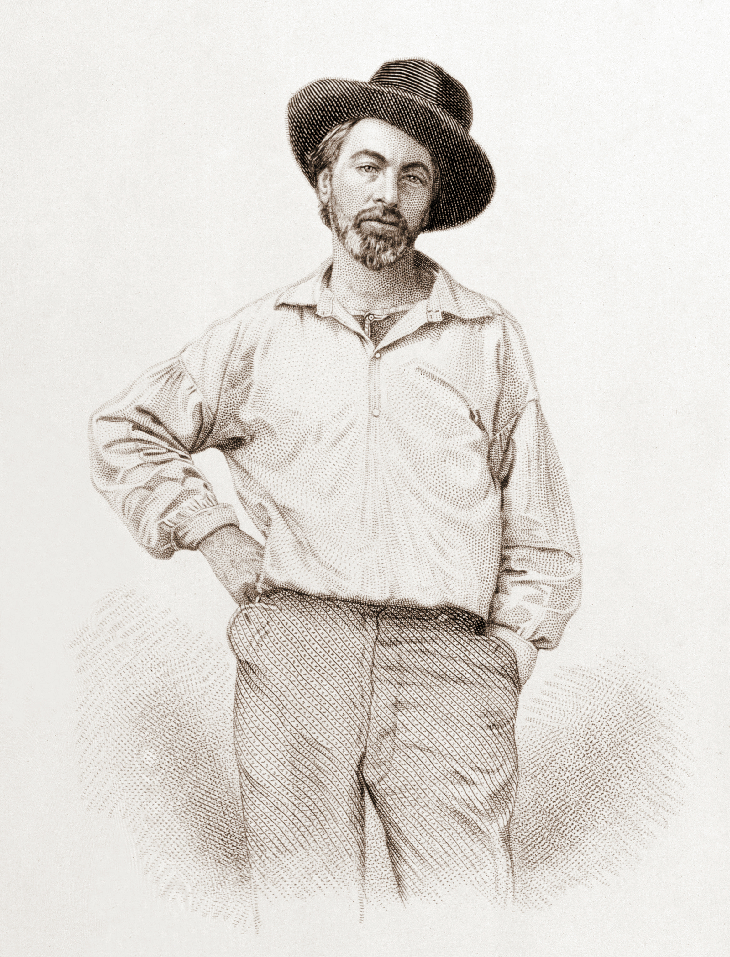 Leaves Of Grass Wikipedia
