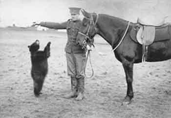 Winnie in the Army (source: Wikipedia)