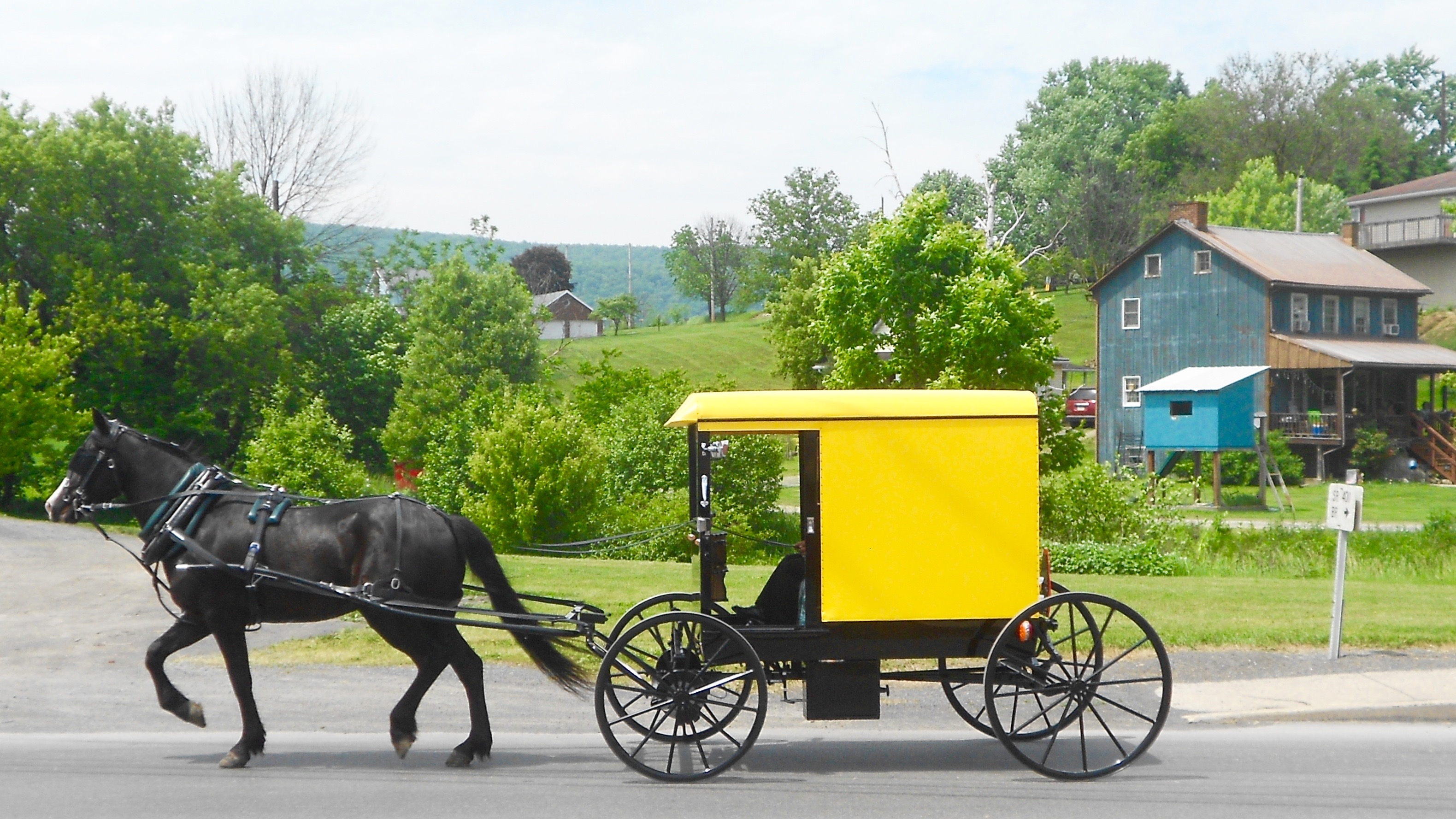 Byler Amish - Wikipedia