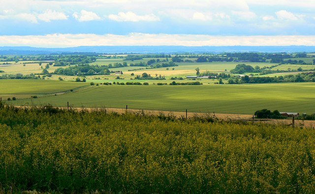 A view across North Wiltshire from the Ridgeway - geograph.org.uk - 477256