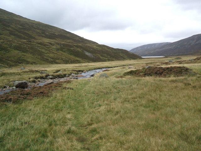 Allt an Loch south of Loch Callater - geograph.org.uk - 1004126