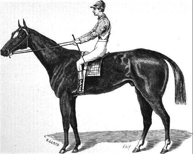 Historique des courses (court survol) et de la Triple Couronne américaine Aristides_%28horse%29