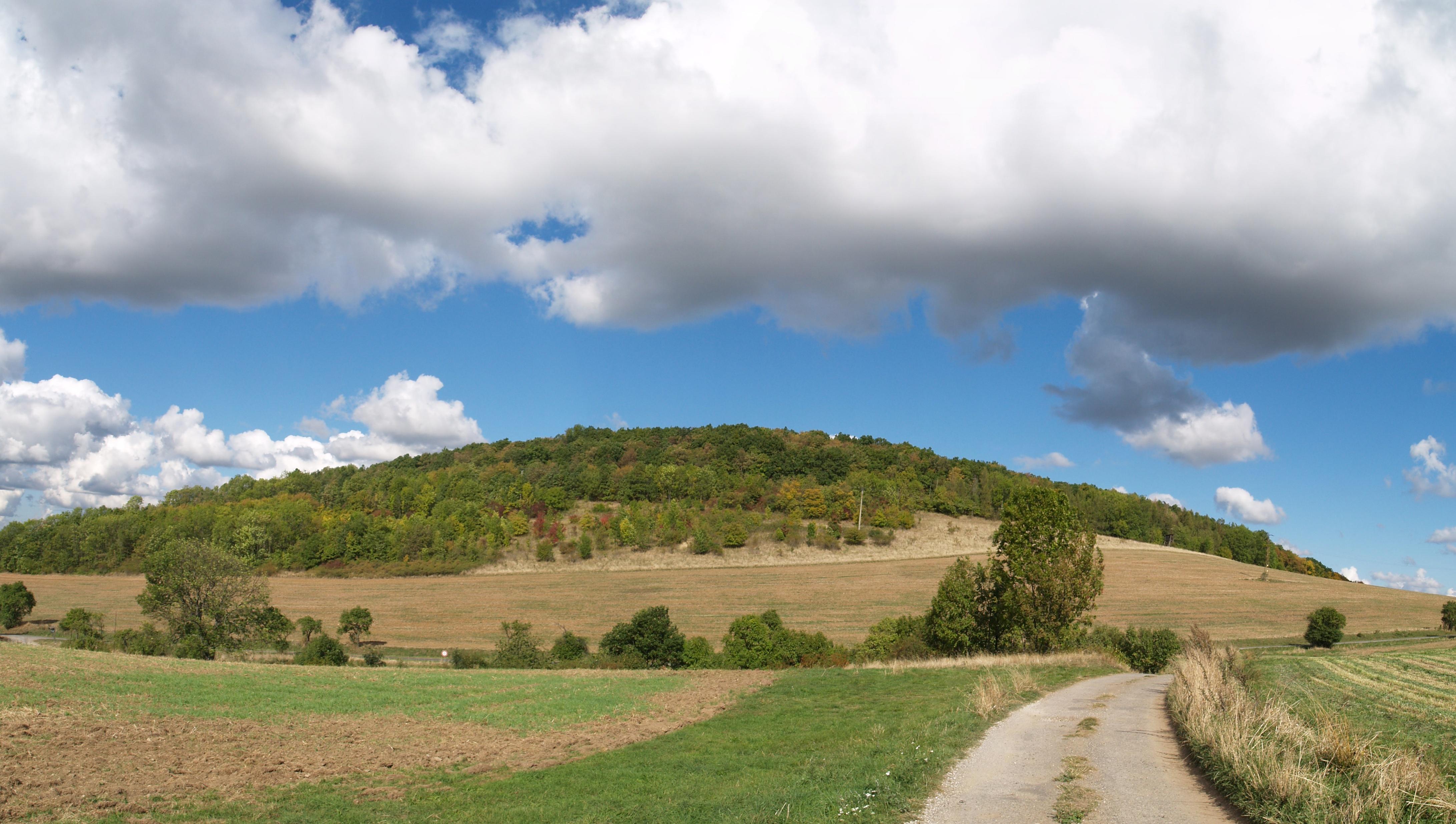 artificial landscape definition