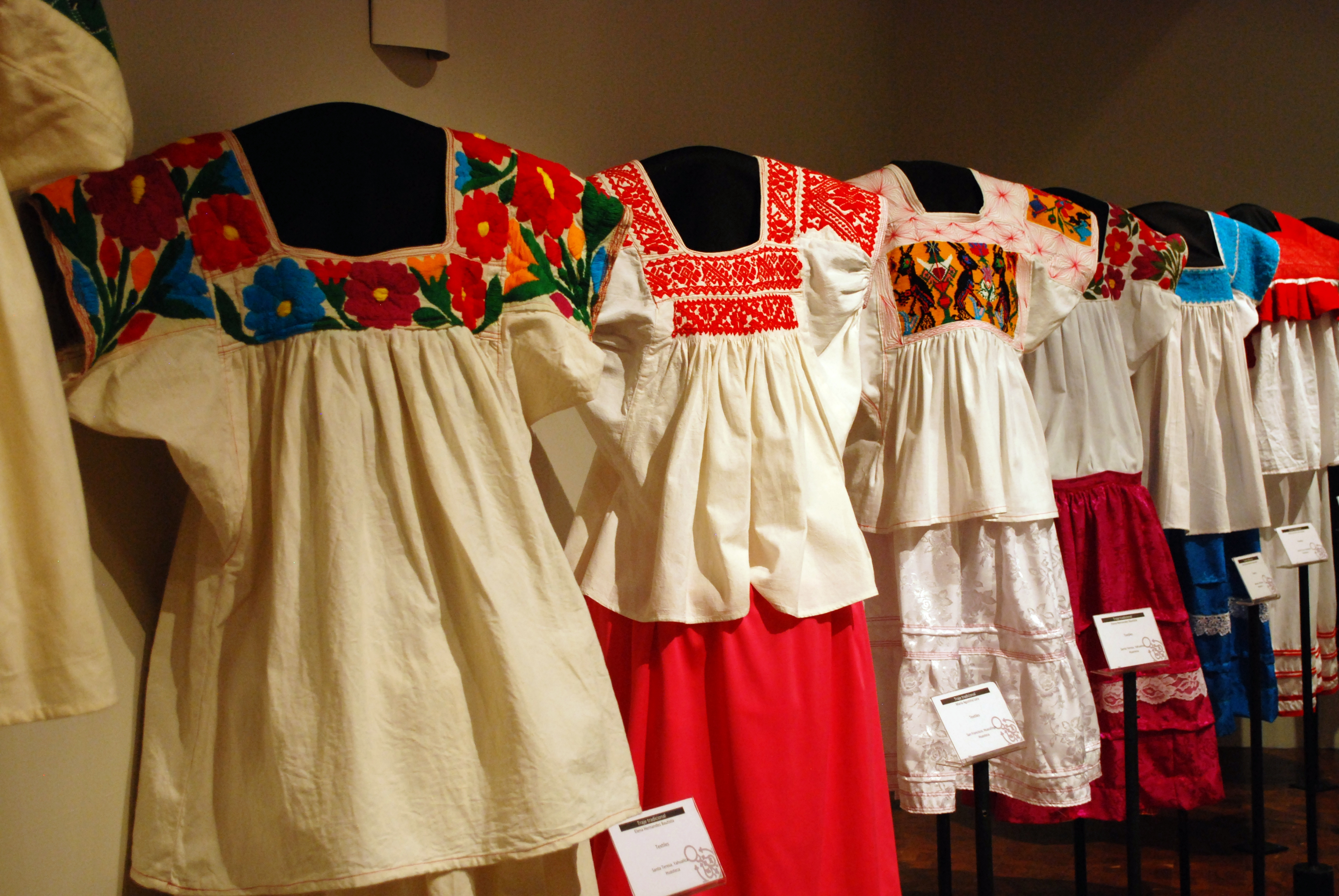 Traditional Mexican Skirt And Blouse Anlis