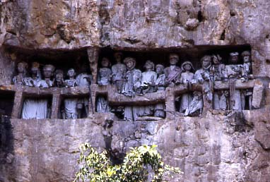 A stone-carved Toraja cliff burial site. Tau tau (effigies of the deceased) look out over the land. Burial Site 2.jpg